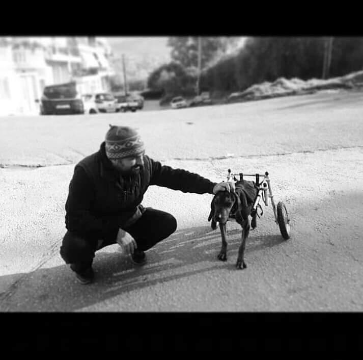 da4a8c9618ea Από το 2015 κατασκεύασε πάνω από 1000 αμαξίδια για ζώα!